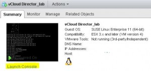 launch_console_vCloud_Director